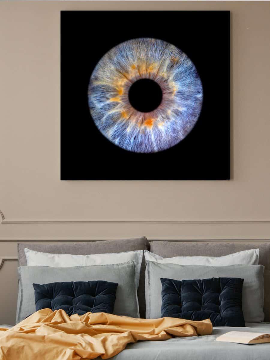 Single Iris Fotografie